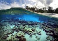 Australia hopes UNESCO won't blacklist Great Barrier Reef