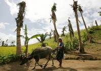 SE Asia must help farmers adapt to mounting disasters - Oxfam