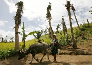 SE Asia must help farmers adapt in face of mounting disasters - Oxfam
