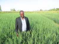Ethiopia seed co-ops benefit entrepreneurs and farmers