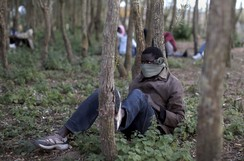 A migrant sits under trees near the Eurotunnel site in Calais, France