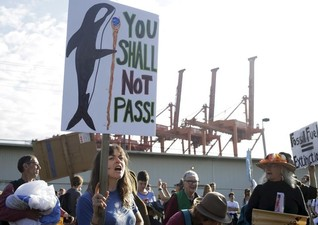 Activists damage habitat in Seattle bay during Shell oil protests