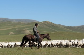 Herder kills himself in Inner Mongolia over land grab