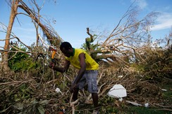 People clear fallen trees at a school days after Cyclone Pam in Port Vila, capital city of Vanuatu