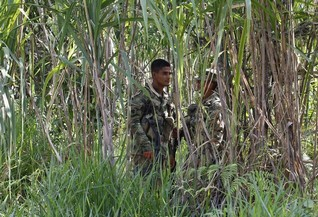 Eight Colombian police, military killed in guerrilla attacks