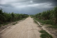 EU under fire for policy linked to land grabbing in Cambodia