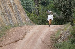 Build better roads in developing world to bolster food supplies -study