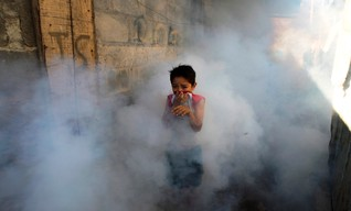 A boy covers his face while a Health Ministry worker fumigates against mosquitoes that carry the chikungunya virus in Managua
