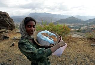 Ethiopia combats climate change