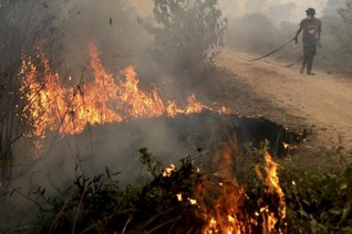 Indonesia seeks help from several countries to fight fires