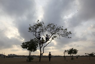 Boys sit in a tree under a partly cloudy sky in an open field in Karachi