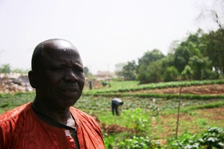 'Guerrilla gardening' takes root in hunger-hit Mali