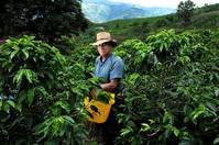 New coffee study a wake-up call for billion-dollar industry