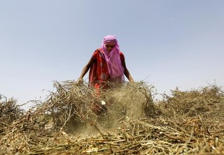 Modi's income insurance idea may not win over angry Indian farmers
