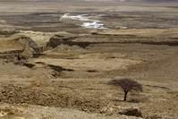 Shrinking Dead Sea leaves trail of perilous sinkholes
