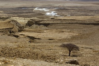 Shrinking Dead Sea leaves trail of perilous sinkholes