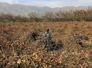 INSIGHT-A decade of Western aid in Afghanistan - mission unsustainable?