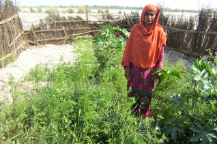 FEATURE-Women take on floods and hunger in rural Pakistan
