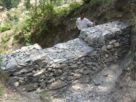 Restoring springs combats water scarcity in India's Himalaya